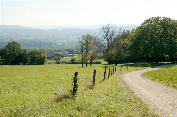 """Oberhalb des staatlichen Landwirtschaftsbetriebes """"Juraweide"""" hat man einen herrlichen Weitblick."""